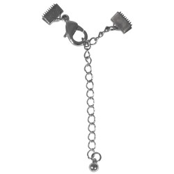 Clasp clip with extension