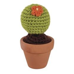 Kit Cactus boule crochet