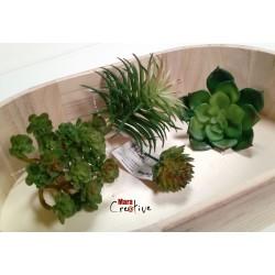 Plantes synthétique pour...